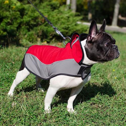 Manteau pour chien bouledogue français «Cape imperméable
